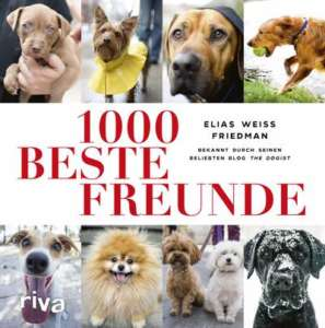 1000_beste_freunde