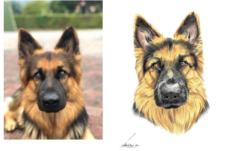 Handgemalte Tierportraits